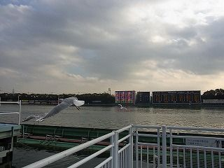 ボートレース多摩川 (6)