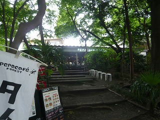 PEPACAFE FOREST入口