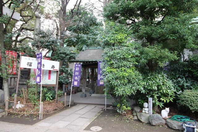 天祖神社 (22)