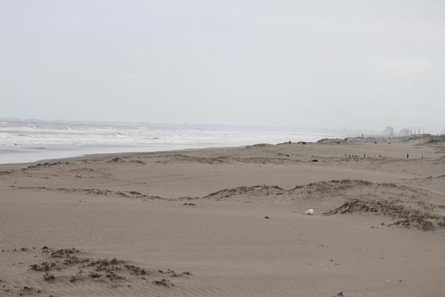 九十九里浜 (16)