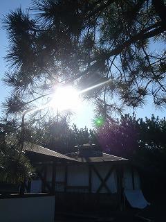 キャンプ場と太陽