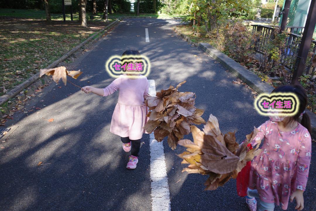 東京の下町の秋を見つけに散歩 (10)