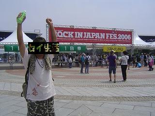 ロッキンオンジャパンフェスとセイ