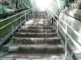 等々力不動尊の階段2