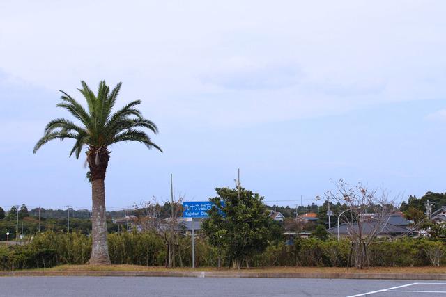 九十九里浜 (4)