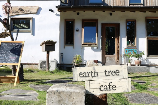 earth tree cafe (10)