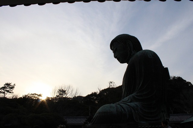 鎌倉の大仏 (8)