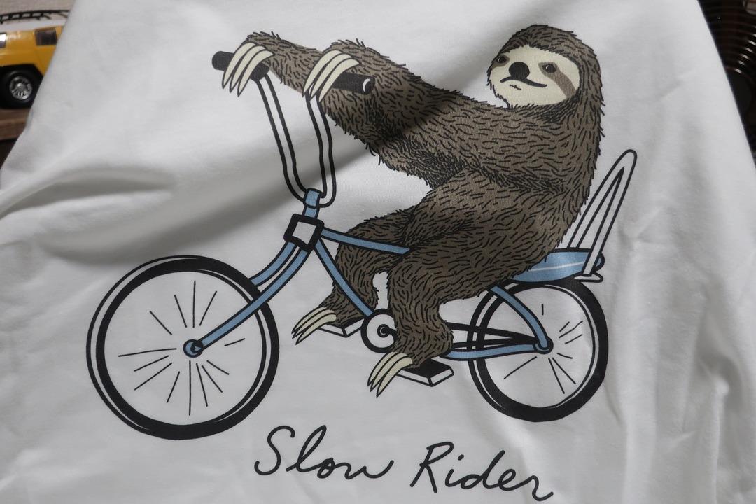 スローライダーTシャツ (4)