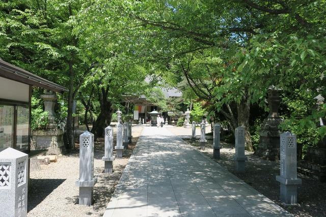 秋保大滝 (5)