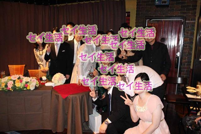秀芸ネコ結婚式 (7)