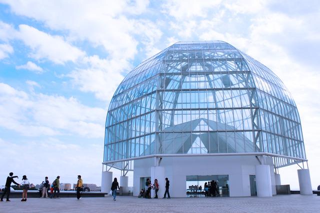 水族館 (6)