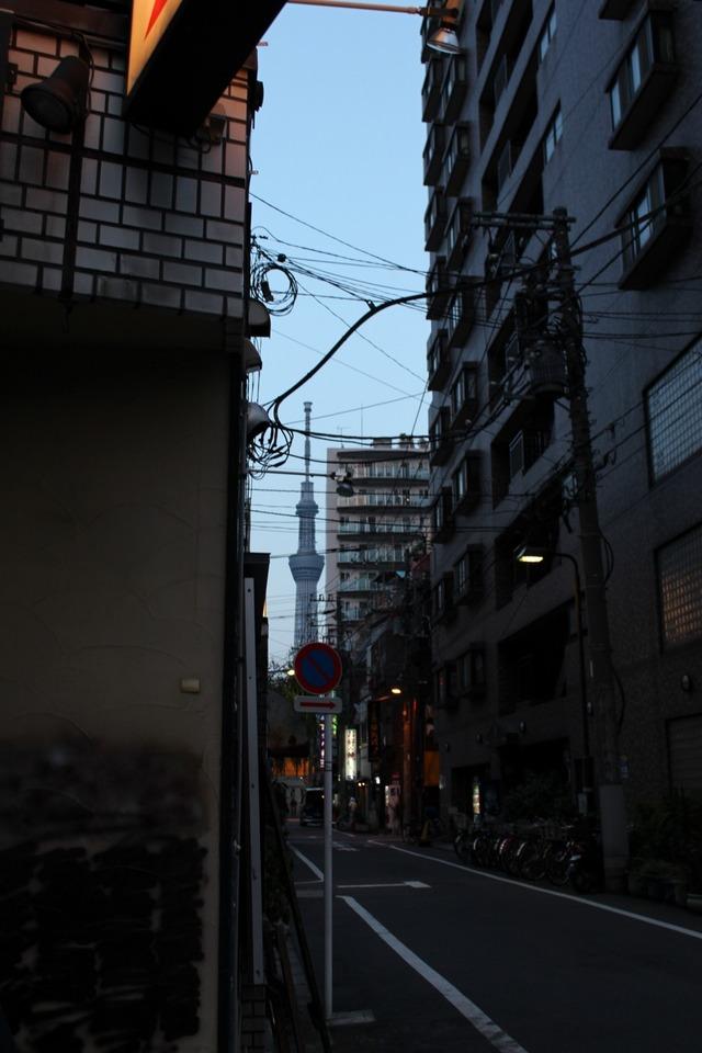 ホッピー通り (11)