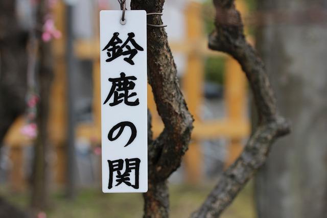 亀戸天神社 (6)