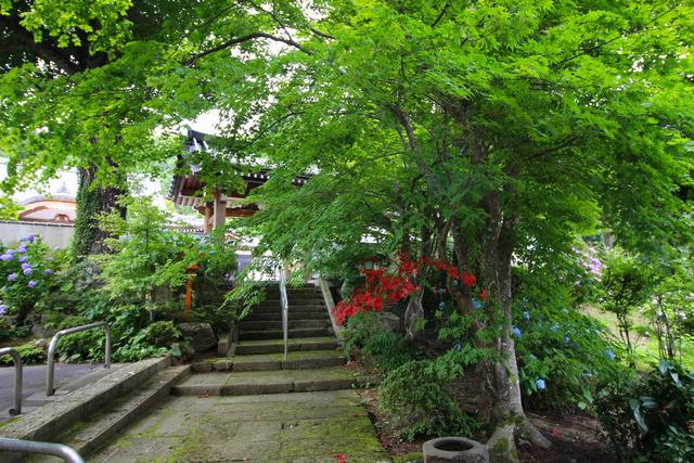 向泉寺 (1)