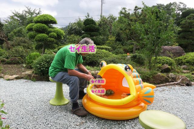 仙台へ帰省 (27)