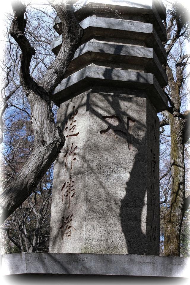 深大寺初詣 (4)