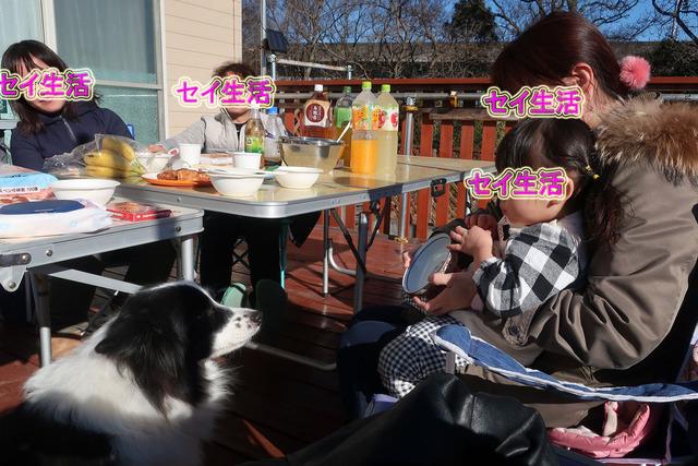 秀芸さん新年会 (12)