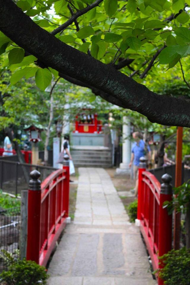 富岡八幡宮本祭り (3)