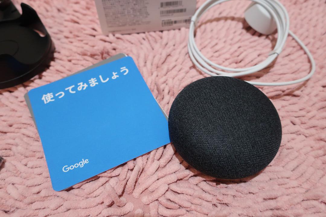 グーグルホームミニとエコーdot (7)