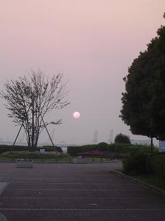 港が見える丘公園と太陽