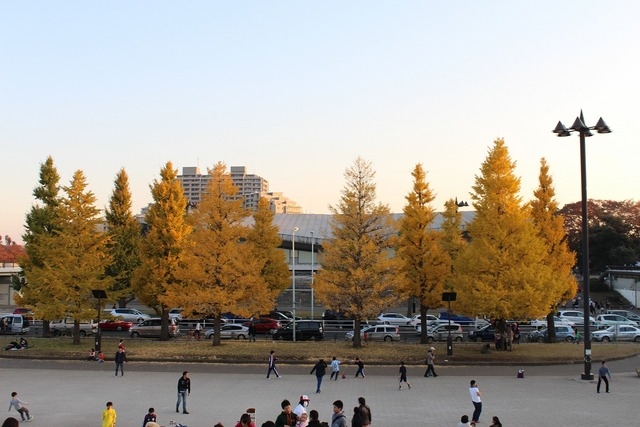 東京ラーメンショー2013 (9)