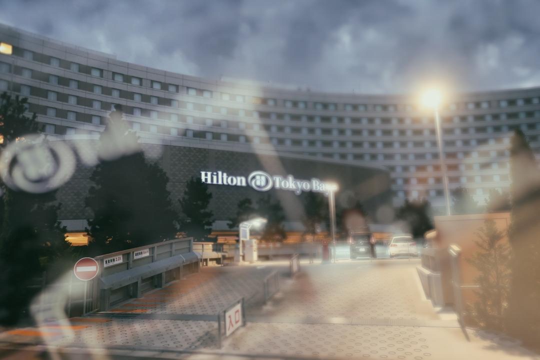ヒルトン (1)