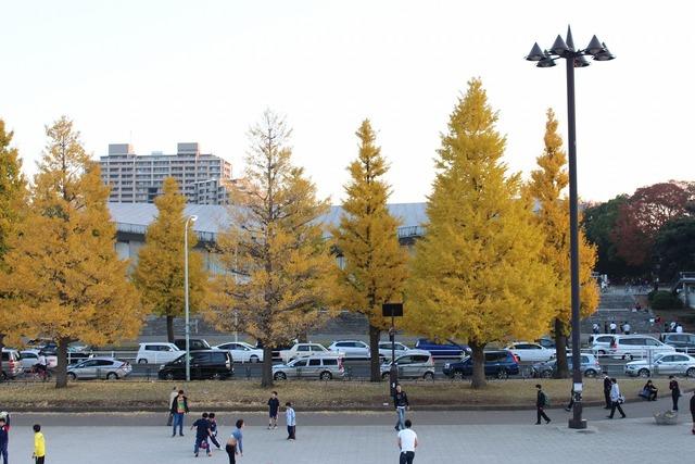 東京ラーメンショー2013 (16)
