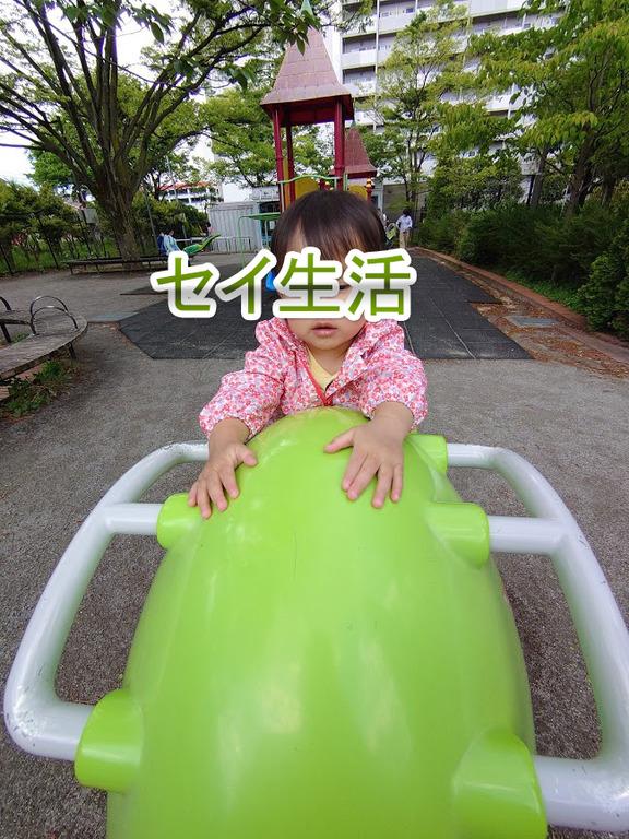 公園巡り (9)
