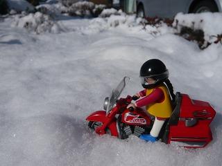 ライコちゃん雪遊び