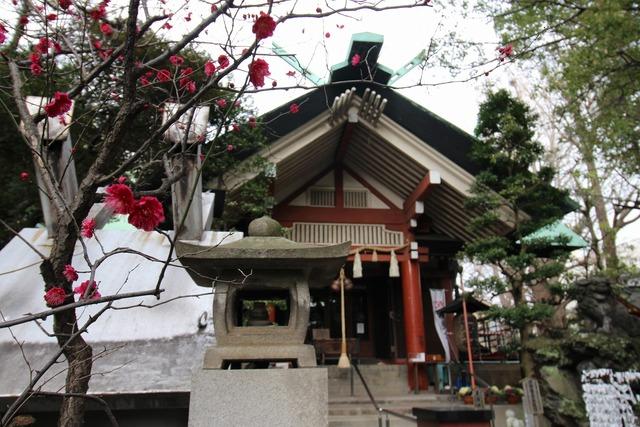 天祖神社 (23)