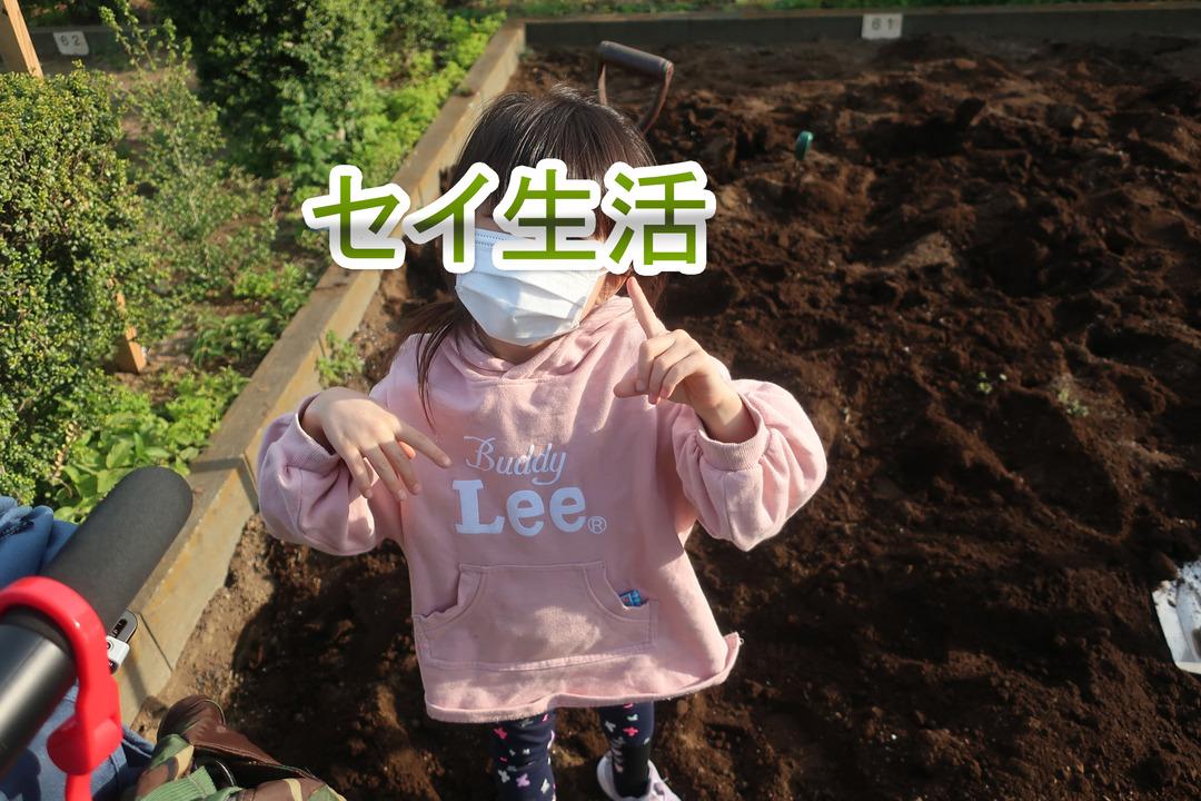 小さな畑 (3)