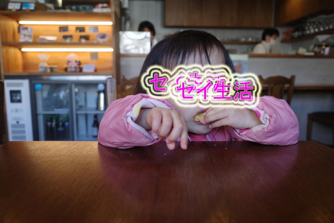 春の訪れと喫茶店  (5)