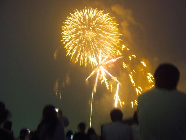 東京競馬場花火大会 (9)