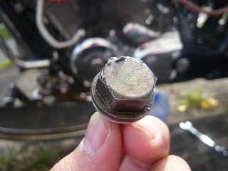 スティードエンジンオイル交換 (2)