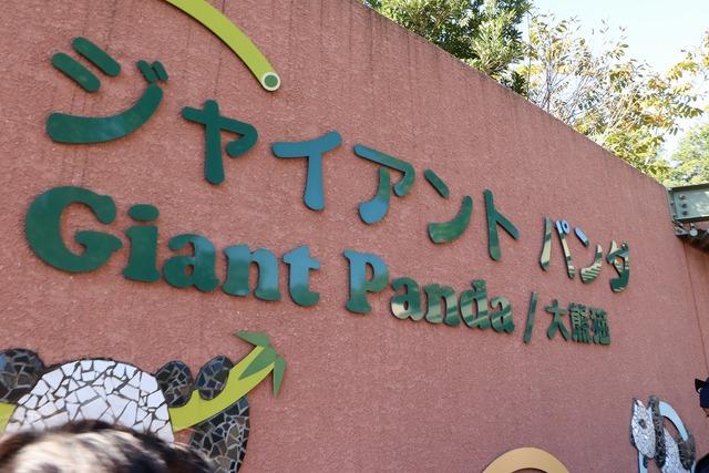 上野動物園 (2)