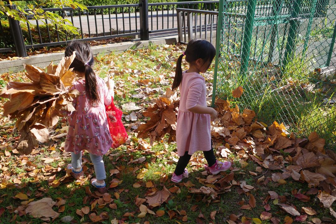 東京の下町の秋を見つけに散歩 (9)