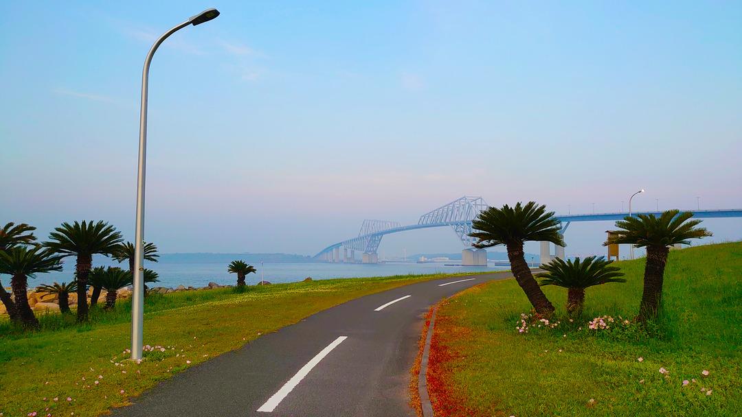 朝焼けの散歩道 (3)