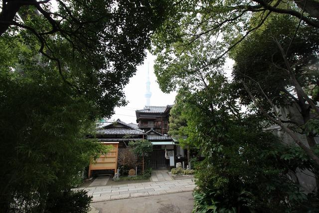天祖神社 (20)
