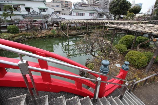 亀戸天神社 (73)