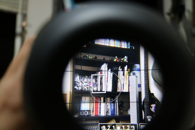 LCDViewfinder (11)