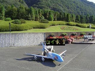 セイと飛行機