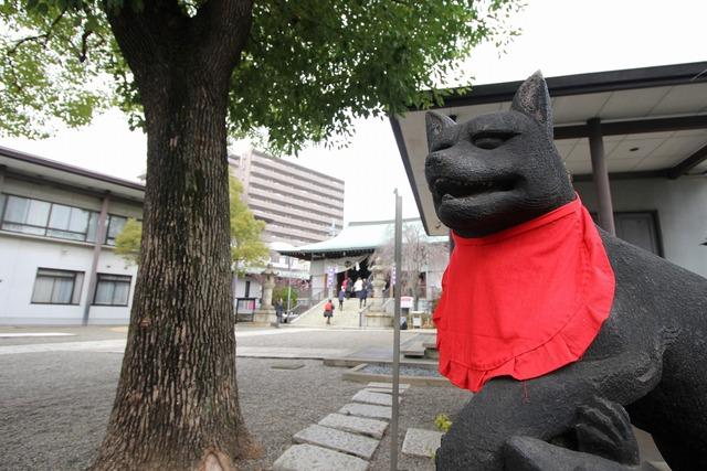 香取神社 (16)