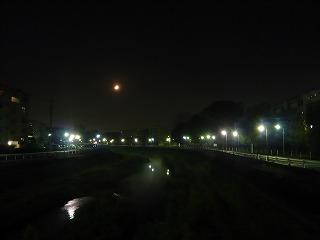 夜桜 (2)