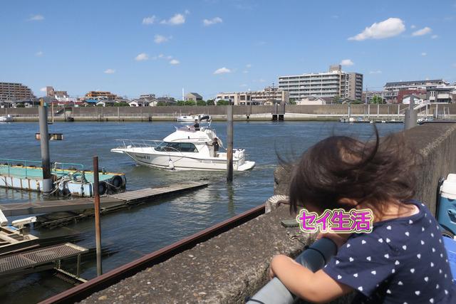妙見島レストラントリム (37)