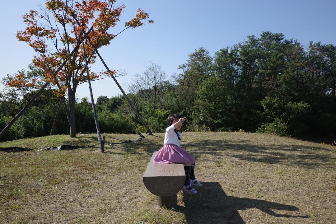 花火と夏の終わり (19)