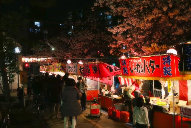 仙台堀川公園桜まつり,jpg (3)