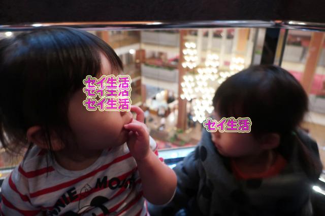 鬼怒川温泉あさや (15)