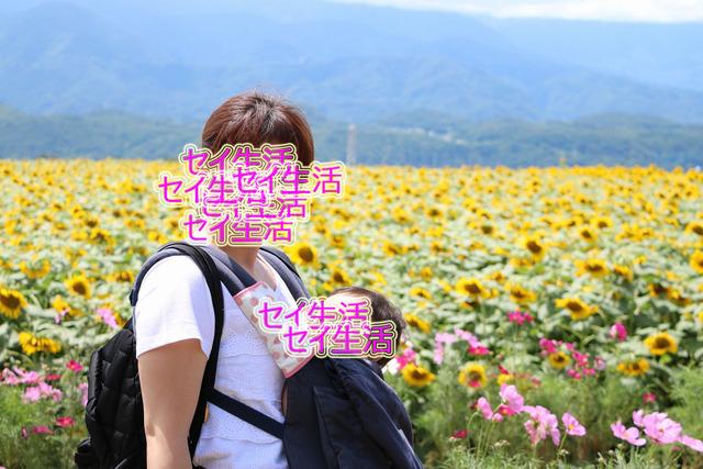 明野ひまわり畑 (10)