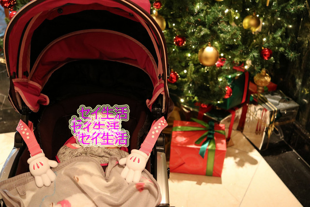 赤ちゃんとホテル (2)
