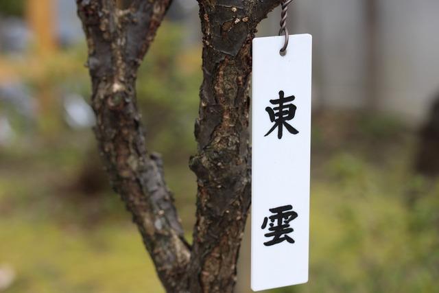 亀戸天神社 (9)